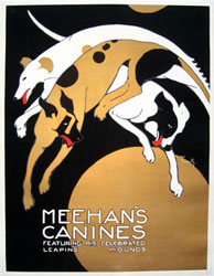 Meehan's Canines